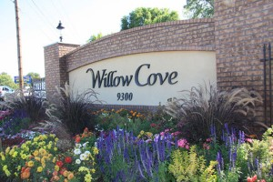 apartments in salt lake city: willow cove
