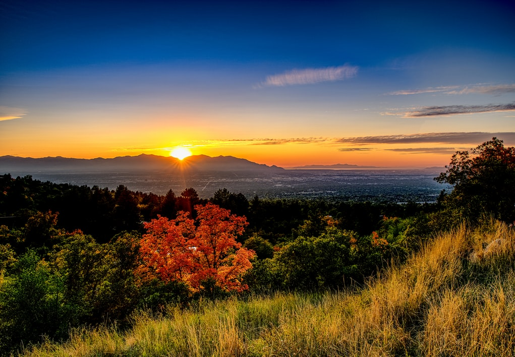 31 Reasons You Should Live in Downtown Salt Lake City